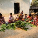 Odisha to promote Forest Product Clusters of Sal Seed, Tamarind,Mahua, Mango, Cashew
