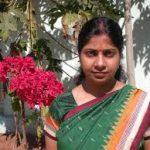Yamini Sarangi back as Jagatsinghpur collector with Bijepur elections over