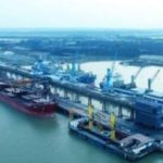 Women Producer Group formed with help of Dhamra Port