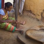 Virtual Tour to State Tribal Museum: Indigenous Methods of Food Preservation by 'Paraja' Community