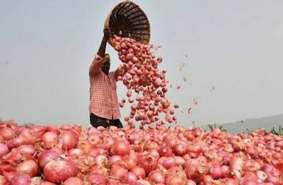 Onion price to come down as 37 million tonnes of Kharif crop to start arriving, Centre's measures to moderate onion prices