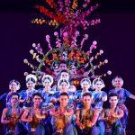 Dhauli-Kalinga Mahosav concludes with martial dance