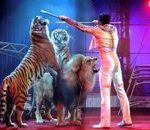 Circus animals are missing, starving amidst Covid-19 pandemic